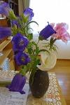 第4週、受付の花