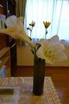 第3週 受付の花