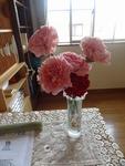 5月第3日曜の花