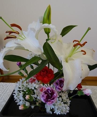 2月 講壇の花