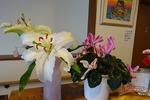 2月玄関の花・左側