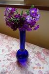 4月 紫の花