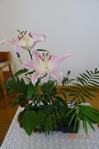 7月講壇の花