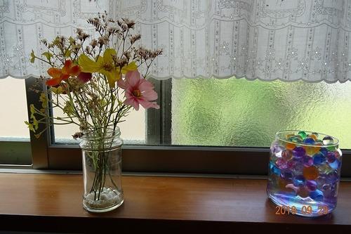 台所の窓際