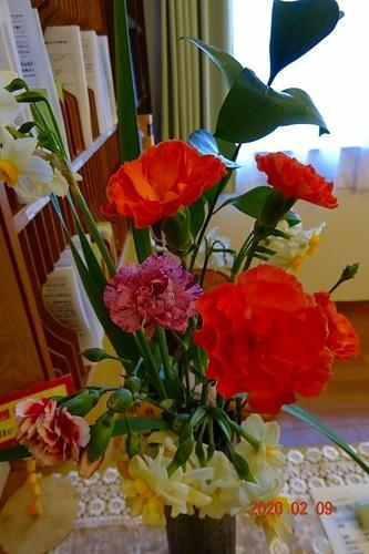 2月 お花