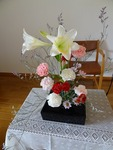 6月第一週の花
