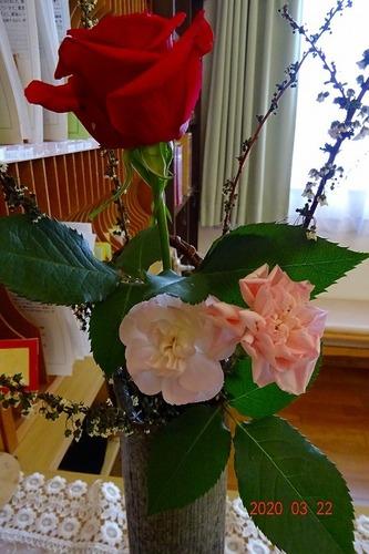 3月第4週 お花