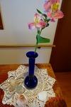 5月 お花