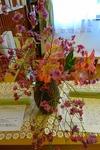 今日もお花がいっぱい