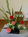 6月第3週の花
