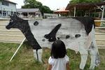 牛のもようが淡路島