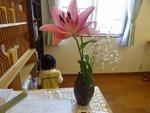 29日(祝) 受付の花