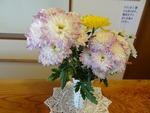 5月第二週 玄関の花