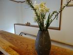 3月 玄関の花