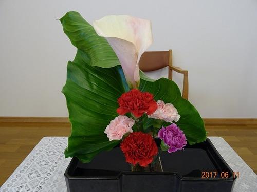 6月11日 講壇の花