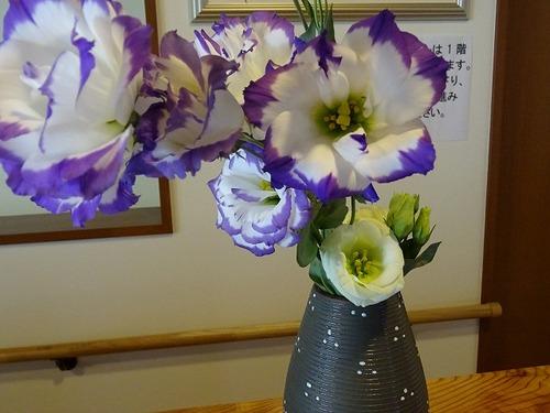 第3週 玄関の花