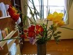 2月第3週 受付の花