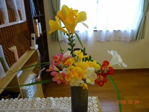 受付、春の花